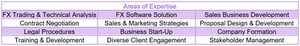 Skills and expertise example by WeLinkTalent