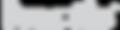noctis-logo.png