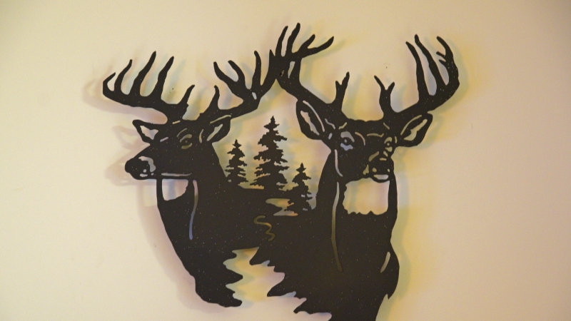 Two bucks and pine trees