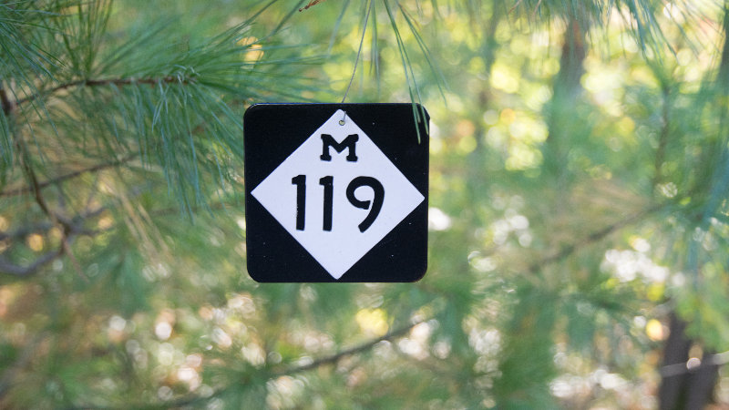 M119 ornament