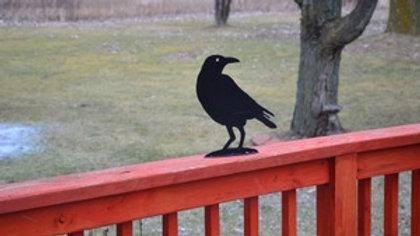 Crow/Raven Deck Critter