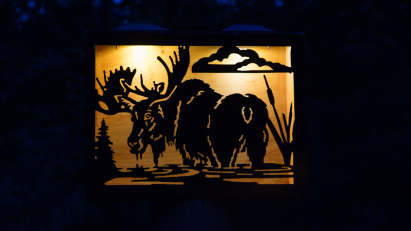 "Moose in water 16"" x 12"" double light solar box"