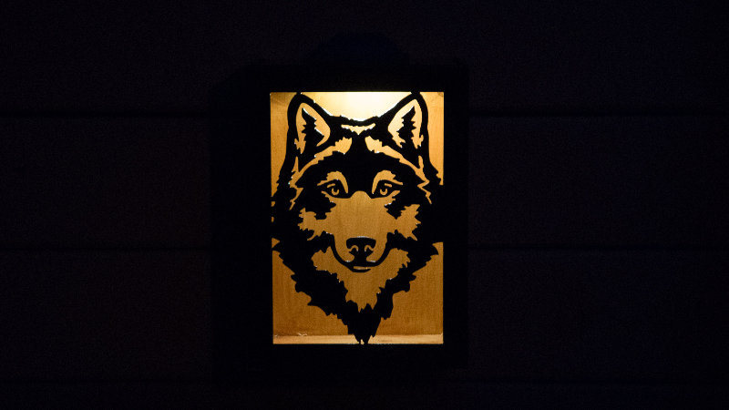 "Wolf solar light box 12"" x 9"""