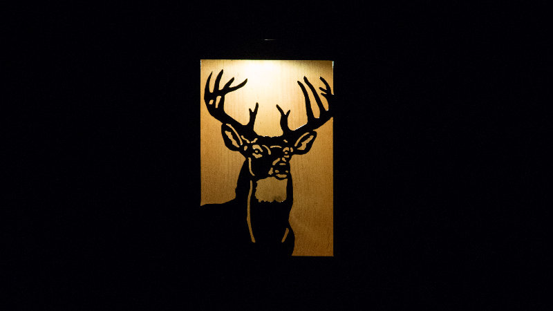 "Big White tail solar light box 12"" x 9"""