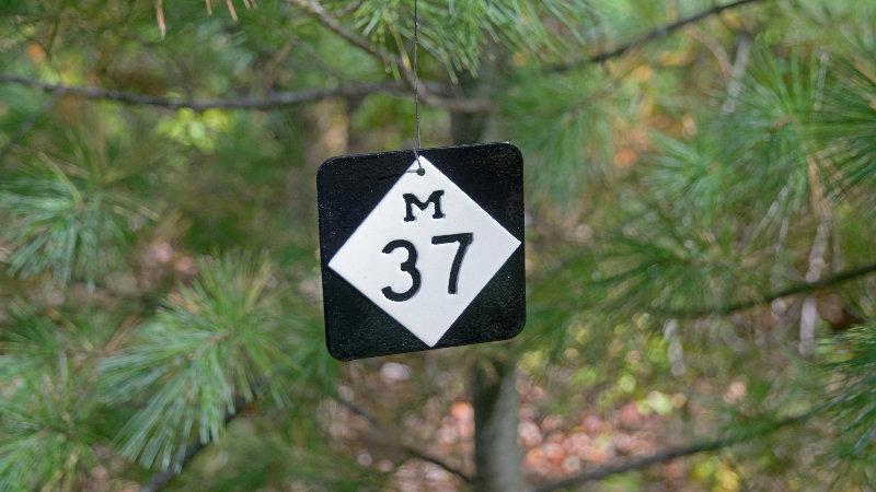 M37 ornament