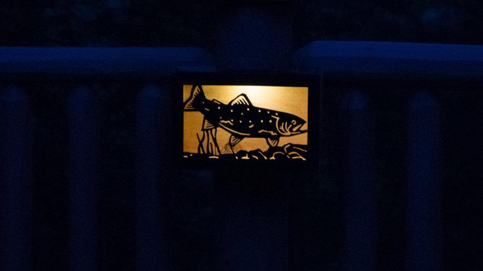"""Trout solar light box 12"""" x 9"""" x 4.5"""""""