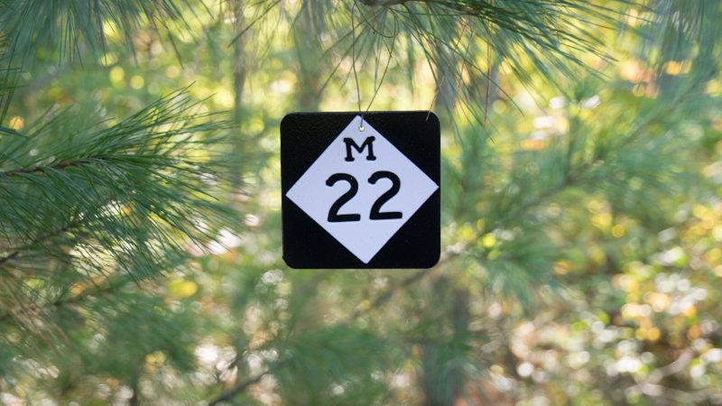 M22  ornament