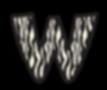 zebra_W.png