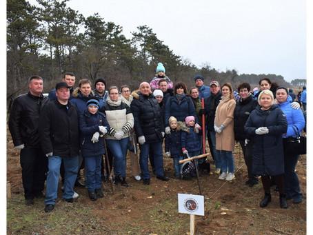 Севастопольские судьи приняли участие в акции «Лес поколений»
