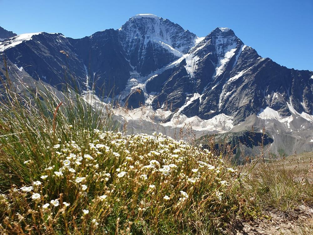 Вид на Эльбрус, одно из чудес России