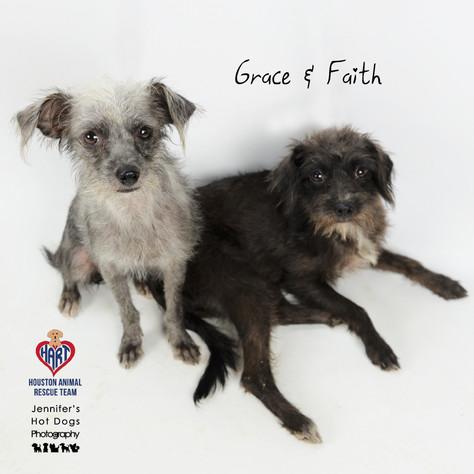 Grace and Faith
