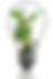 Adult_Ed_Logo_100x.png