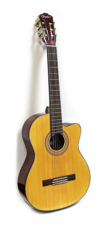 Classical Guitar with Cutaway