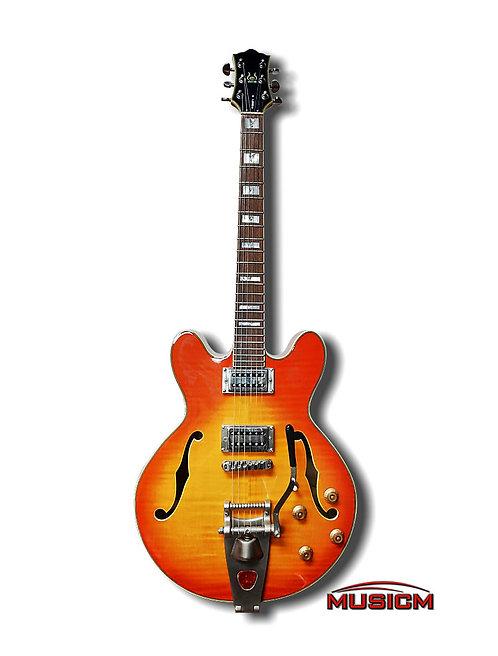 Hollow Body Electric Guitar