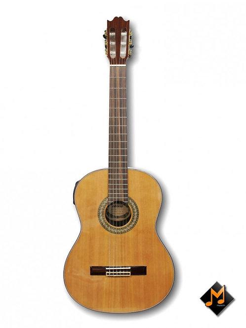 Classical Electric Guitar AGW-238
