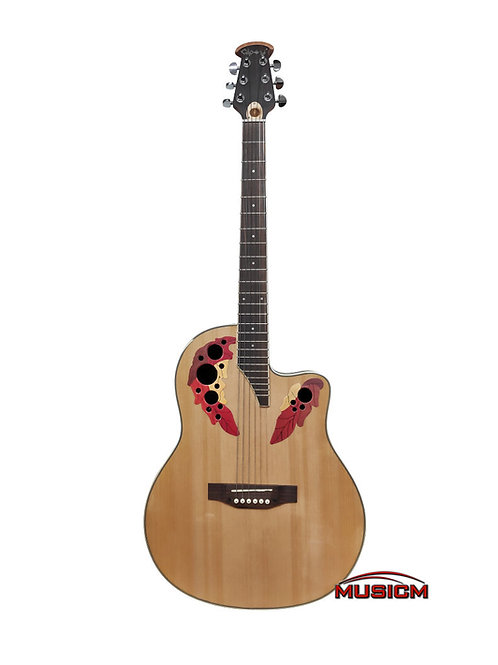 Roundback Acoustic Guitar Natural