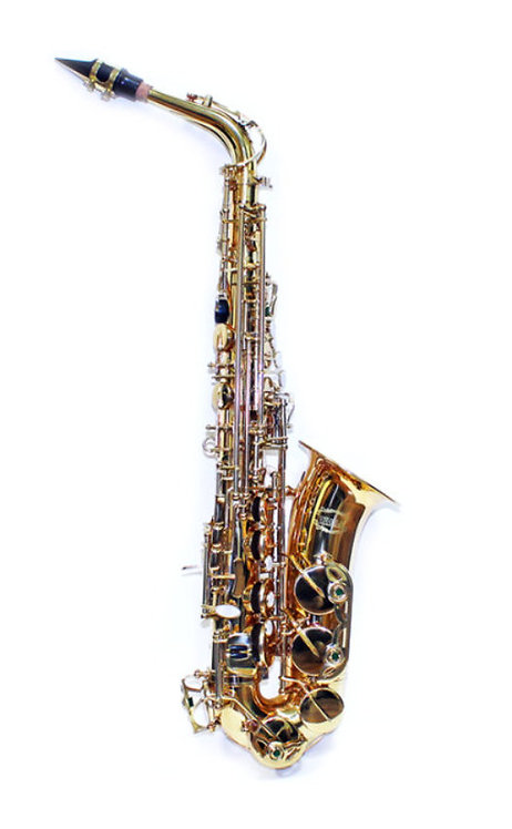 Alto Saxophone Brand New For School Band