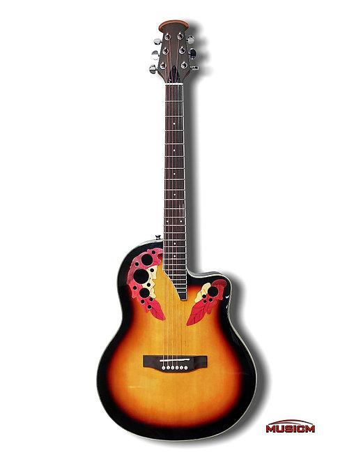 Roundback Acoustic Guitar Sunburst