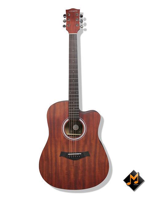 LT-4107 Acoustic Guitar
