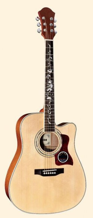 Acoustic Guitar MDC511S