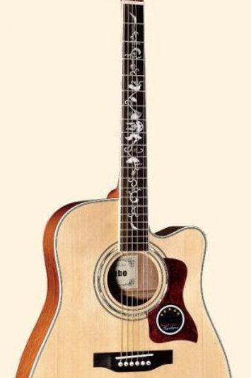 Acoustic Guitar MDC511S