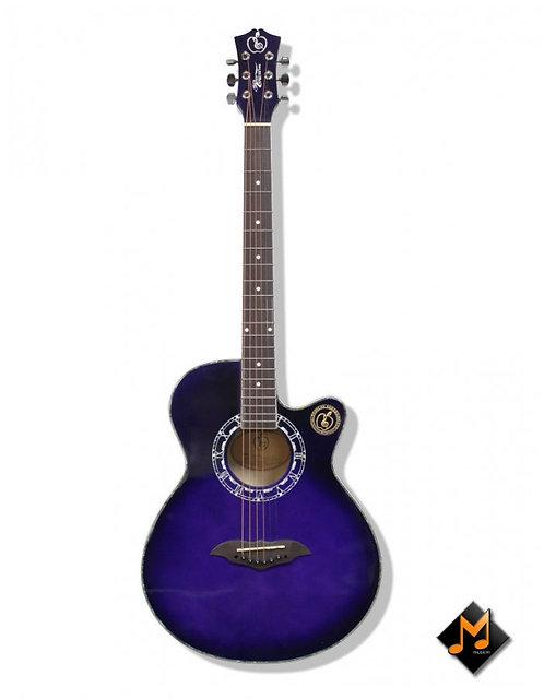 Acoustic Guitar MRC408VTS
