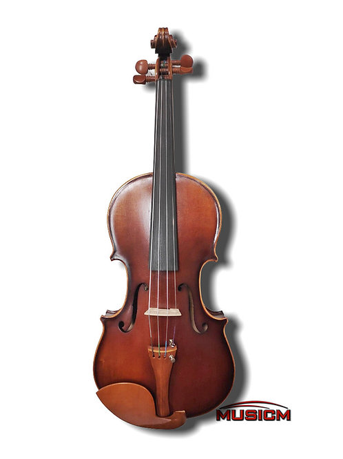 4/4 Size Violin RV-305
