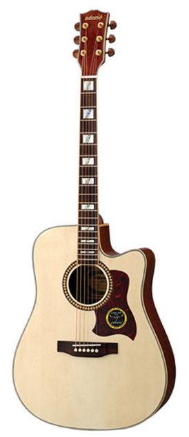 Acoustic Guitar MGW4112C