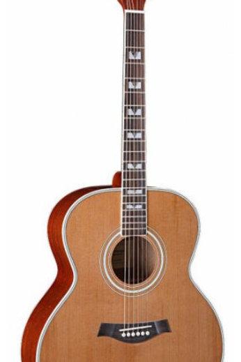 Acoustic Guitar ILW-526A