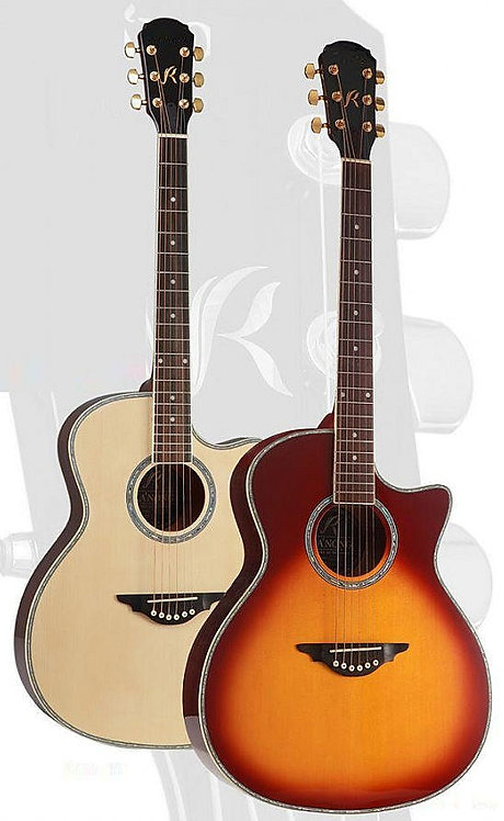 Acoustic Guitars MPT3
