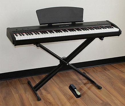 Digital Piano 88 Gradually Weighted Keys X-Stand Brand New