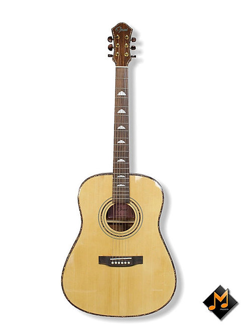 Acoustic Guitar MDC141S