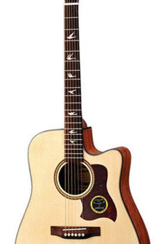 Acoustic Guitar MGW4111C