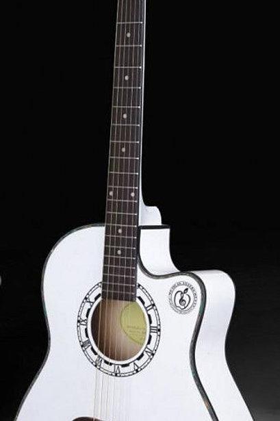 Acoustic Guitar MRC408WH