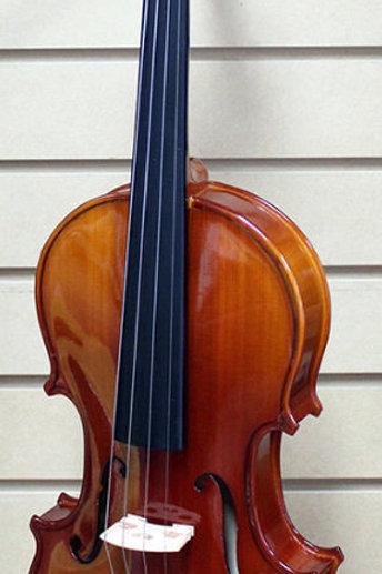 4/4 Violin RV-205 Brand New