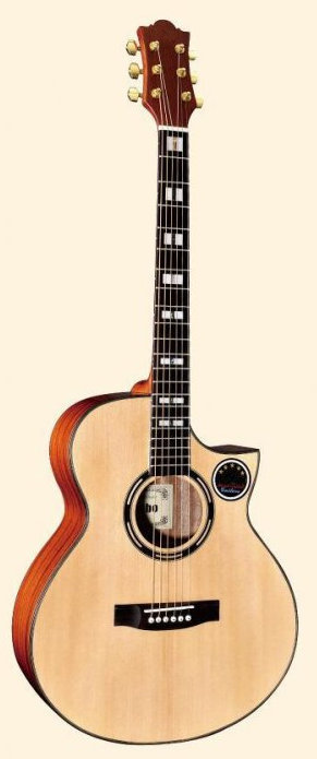 Acoustic Guitar MLC-561SC