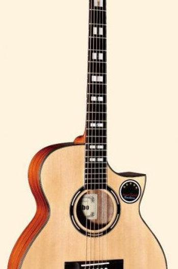 Acoustic Guitar MLC-561SC