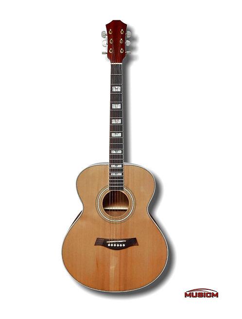 Acoustic Guitar ILW-41A