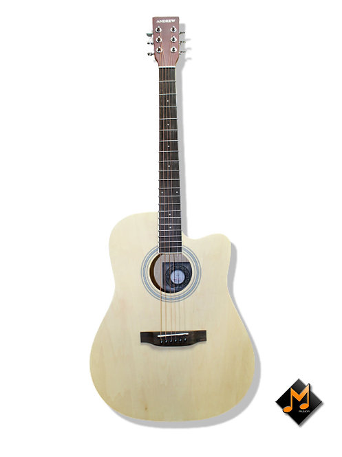 LT-4100N Acoustic Guitar