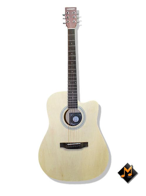 LT-4100 Acoustic Guitar