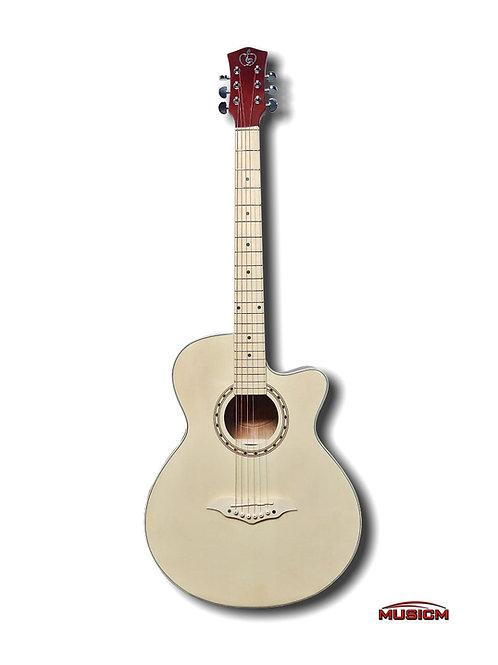 Acoustic Guitar M-Series 100