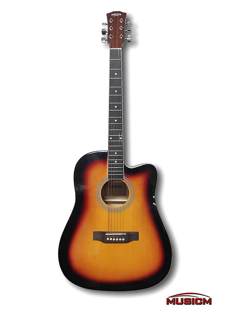 Acoustic Electric Guitar with EQ