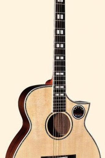 Acoustic Guitar MLE-111SC