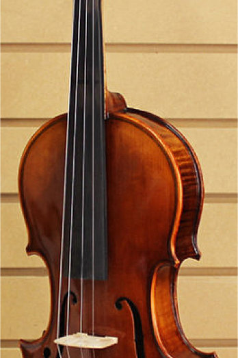 Violin RV-505BH