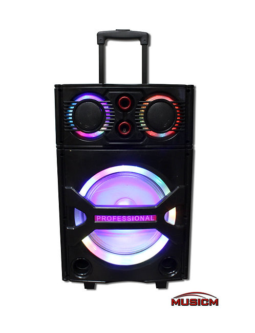 Bluetooth Amplifier with LED Lights (Floor Model)