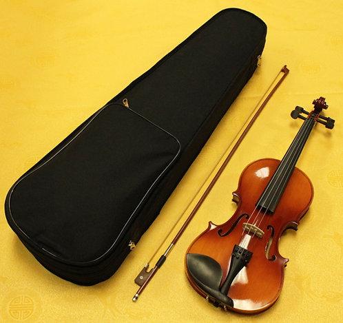 Violin VB-280 Brand New