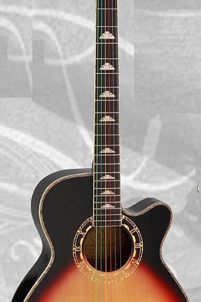Acoustic Electric Guitar M500E_BR