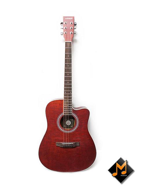 LT-4119 Acoustic Guitar