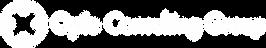 rgb-logomark-white.png