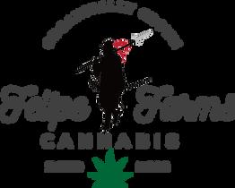 Felipe Farms Logo FV transparent.png